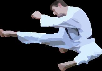 karate-42412_960_720